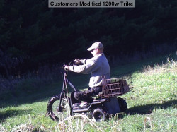 48V-1200W-Adult-Electric-Tricycle-Electric-Trike-with-Carrying-Rack-5